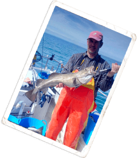 2019 News | Lyme Bay Fisheries & Conservation Reserve